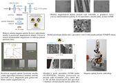 Laboratoř magneto-optické Kerrovy mikroskopie